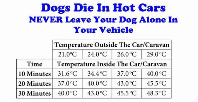 temperatura-automobilyje-nepalikite-suns